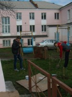 Члены патриотического клуба «Дон» осуществляет посадку сосен.